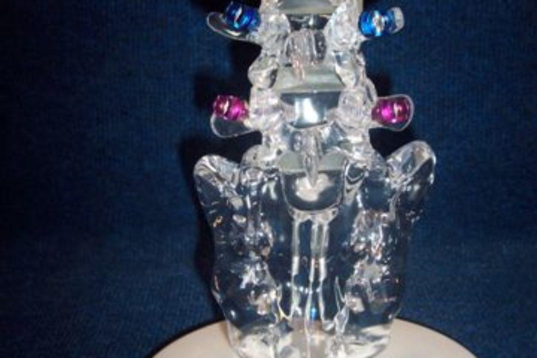 lumbar spine2